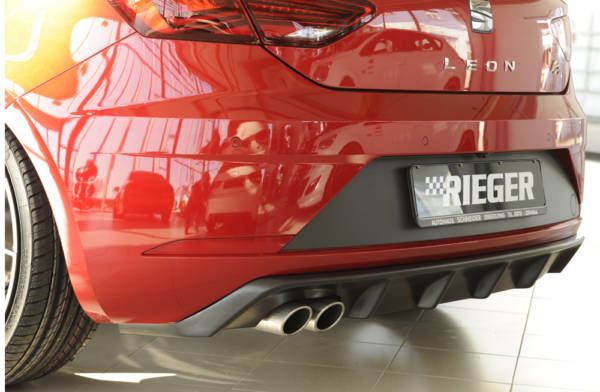 00027033 5 Tuning Rieger