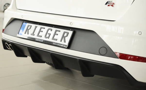 00027035 8 Tuning Rieger