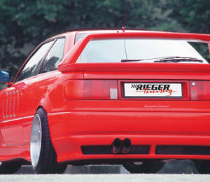 00043080 2 Tuning Rieger