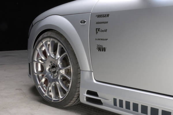 00055113 5 Tuning Rieger