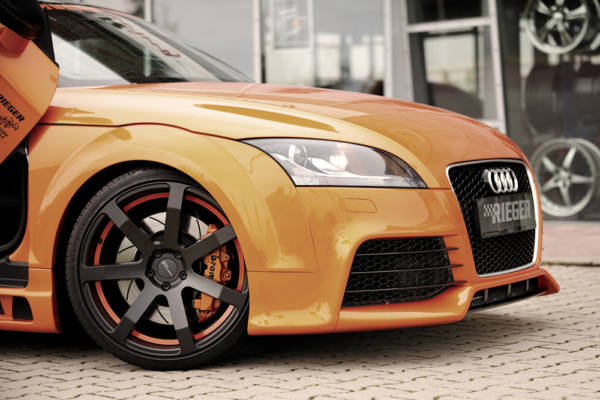 00055163 6 Tuning Rieger