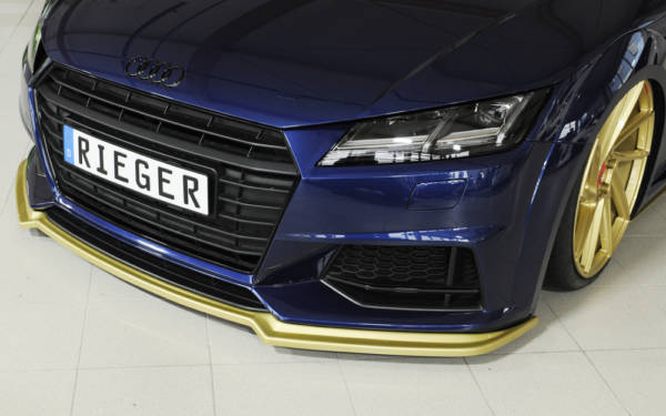 00055170 5 Tuning Rieger