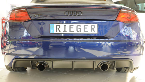 00055175 5 Tuning Rieger