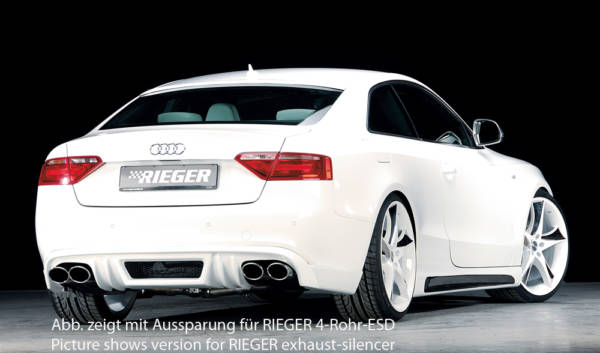 00055407 2 Tuning Rieger
