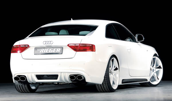00055408 2 Tuning Rieger