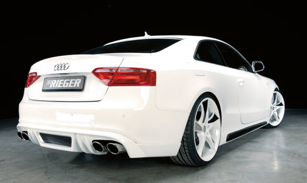00055408 4 Tuning Rieger