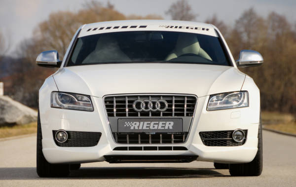 00055411 4 Tuning Rieger