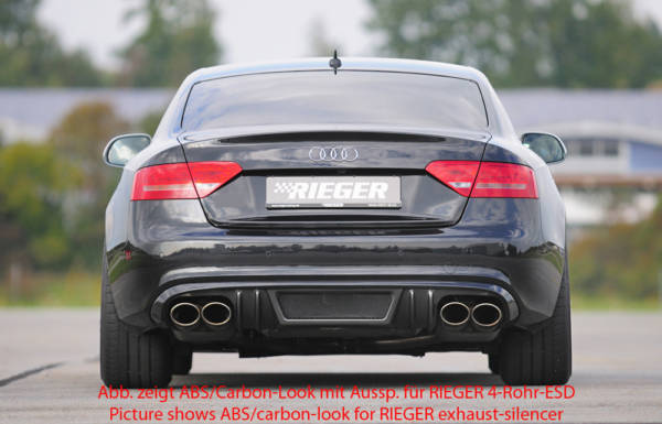 00055414 3 Tuning Rieger
