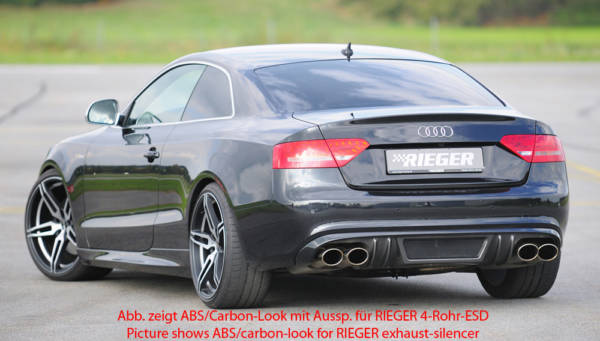 00055417 2 Tuning Rieger