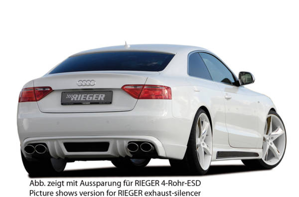 00055419 4 Tuning Rieger