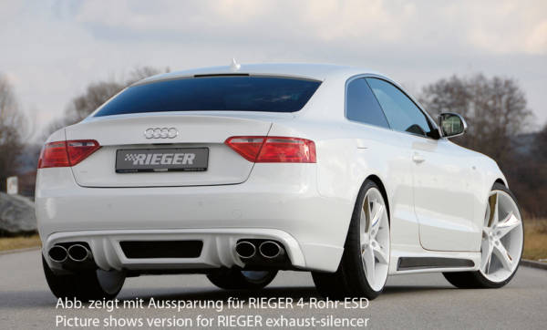 00055420 2 Tuning Rieger