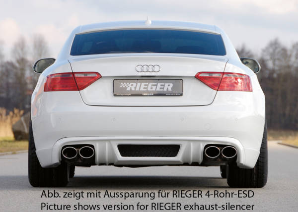 00055424 2 Tuning Rieger