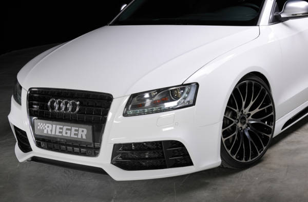 00055431 8 Tuning Rieger