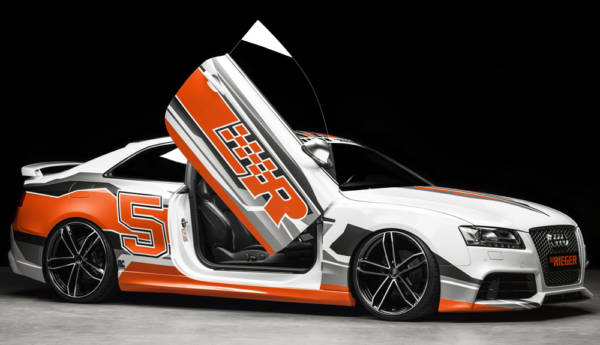 00055433 6 Tuning Rieger
