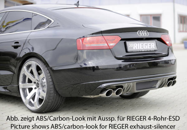 00055437 3 Tuning Rieger
