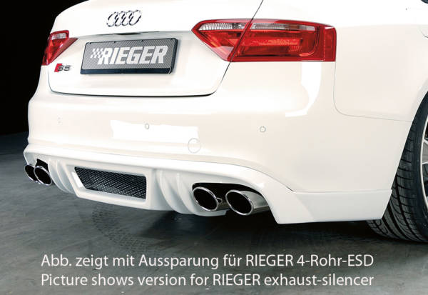 00055439 2 Tuning Rieger