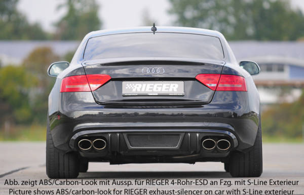00055445 3 Tuning Rieger
