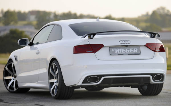 00055446 6 Tuning Rieger