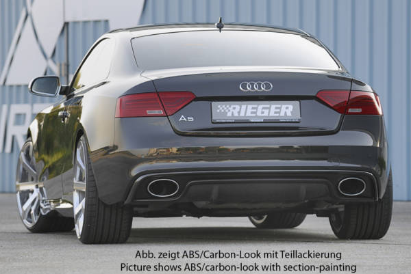 00055470 7 Tuning Rieger