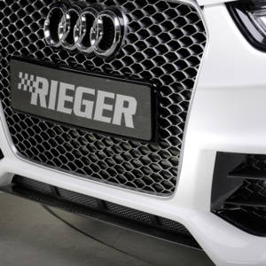 00055548 2 Tuning Rieger