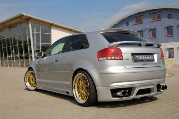 00056710 3 Tuning Rieger