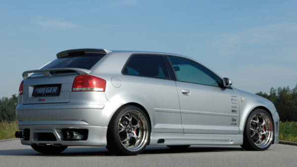 00056725 3 Tuning Rieger