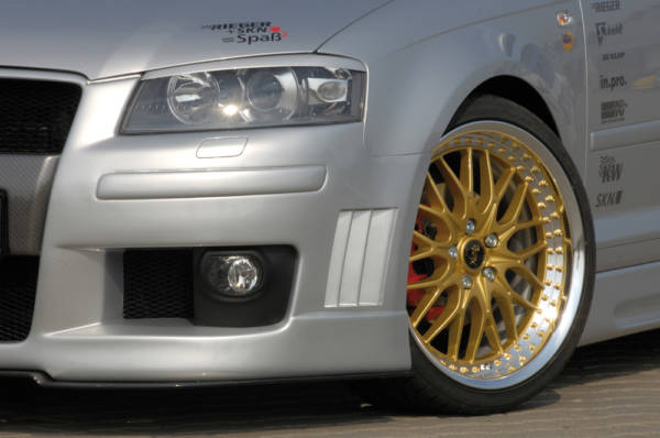 00056733 3 Tuning Rieger