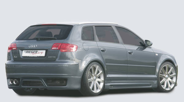 00056741 4 Tuning Rieger
