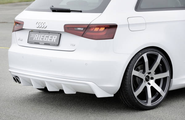 00056786 2 Tuning Rieger