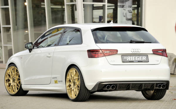 00056796 5 Tuning Rieger