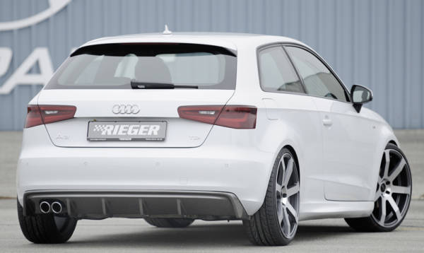 00056797 4 Tuning Rieger