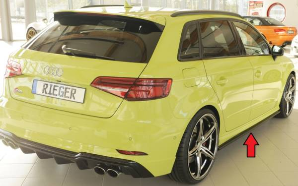 00056817 6 Tuning Rieger