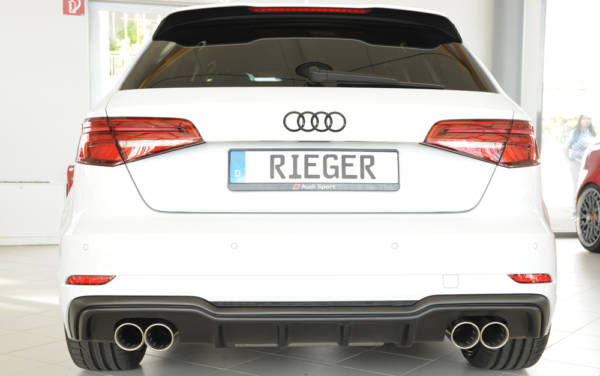 00056822 6 Tuning Rieger
