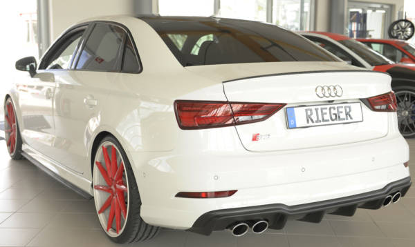 00056825 4 Tuning Rieger