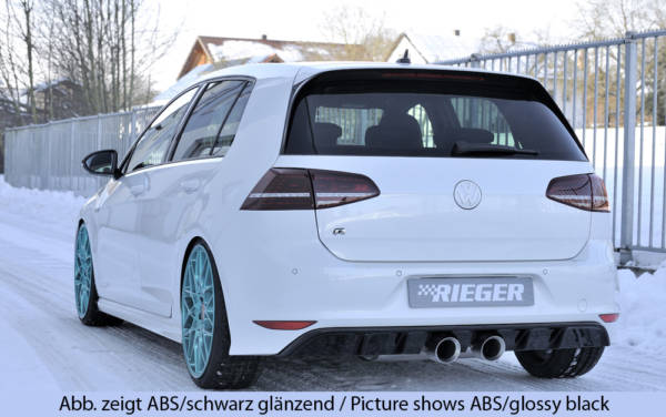 00059568 6 Tuning Rieger