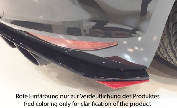 00059578 2 Tuning Rieger