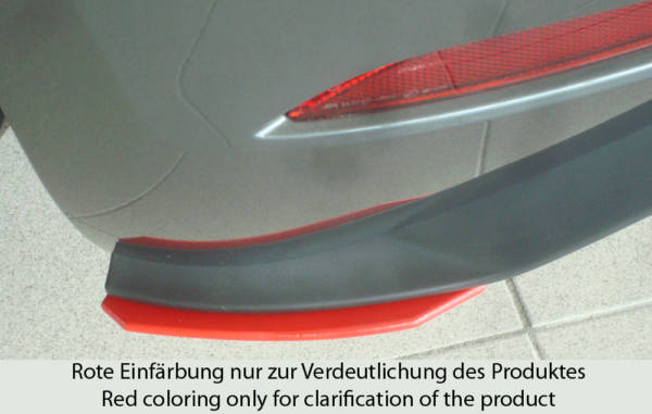 00059595 2 Tuning Rieger