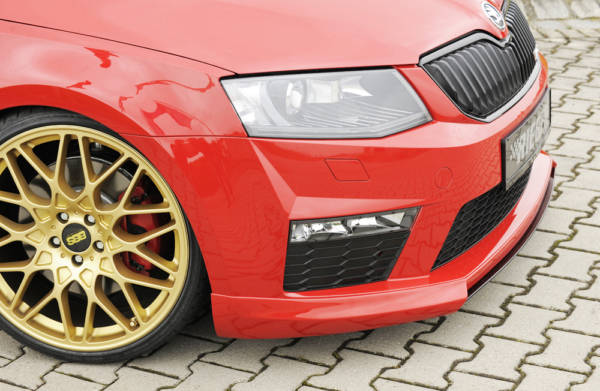 00079010 3 Tuning Rieger