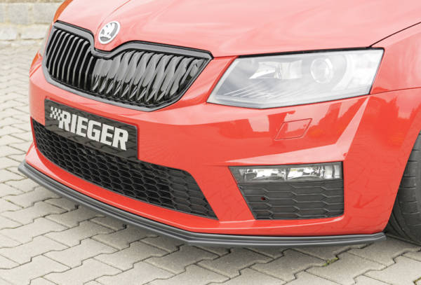 00079012 2 Tuning Rieger