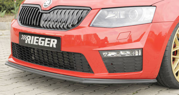 00079012 4 Tuning Rieger