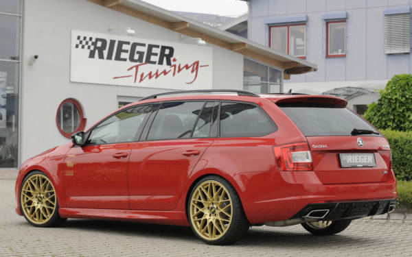 00079013 3 Tuning Rieger