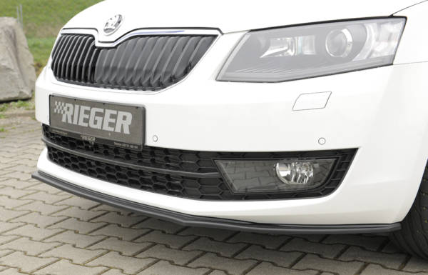 00079017 2 Tuning Rieger