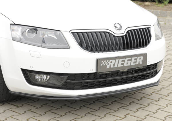 00079017 4 Tuning Rieger