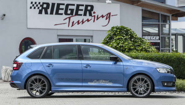 00079020 7 Tuning Rieger