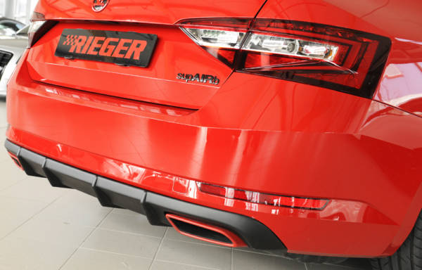 00079043 2 Tuning Rieger