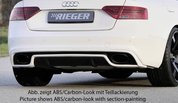 00088018 8 Tuning Rieger