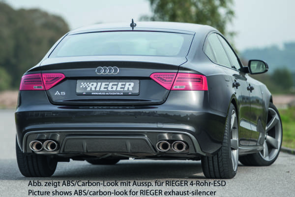 00088040 2 Tuning Rieger