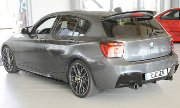 00088062 8 Tuning Rieger