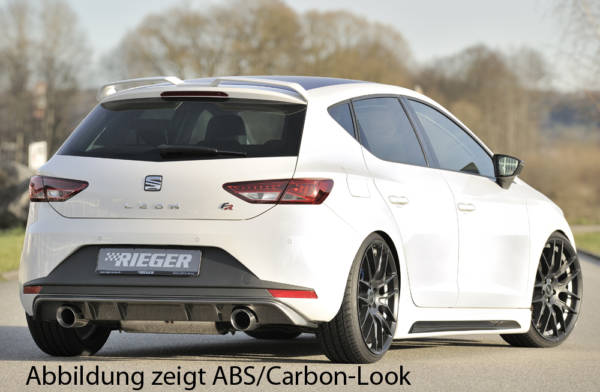00088089 5 Tuning Rieger