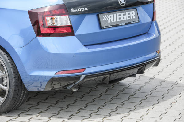 00088095 2 Tuning Rieger